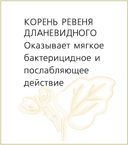 ревень2